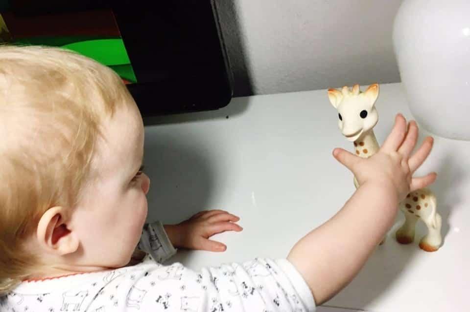 WINWEEKEND APRIL 1 | Sophie de giraf bijtring