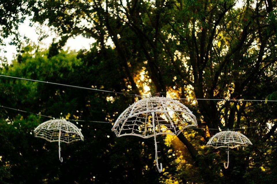 Tuinfeest organiseren | Tips voor een geslaagd tuinfeest