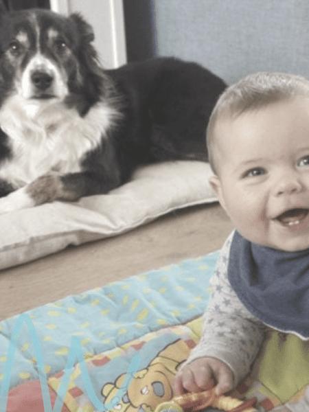 Huisdieren en baby's, kan dat samen?